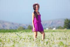 Model in a pink dress on a dandelion field in a straw hat Royalty Free Stock Images