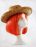 Model of polystyrene pink wig brown hat Stock Photography