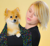 Model with a Pomeranian. Studio work with a model holding a Pomeranian Royalty Free Stock Photography
