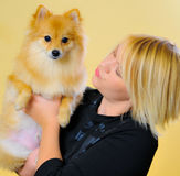 Model with a Pomeranian. Studio work with a model holding a Pomeranian Stock Photo