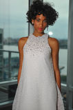 A model poses during the Fall 2015 Bridal Collection Pamella Roland Presentation Stock Photos