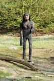 Model of Proconsul Africanus in Theme Park Royalty Free Stock Photos