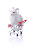 Model ram in shopping cart isolated on white Royalty Free Stock Photography