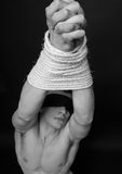 Model with ropes royalty free stock image