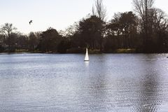 Model sailboats in a pond in a park in Paris. Birds fly, parents walk with children, geese in a pond royalty free stock photography