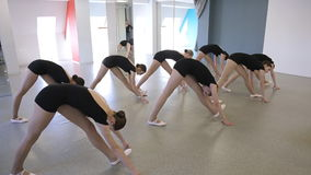 In model school beautiful and young women are stretching and holding pose. In model school beautiful and young women are stretching doing exercises for body stock video footage