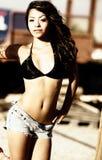 model sexigt för latino Royaltyfri Fotografi