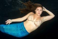 Model With Shell Bikini Royalty Free Stock Photos