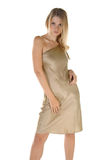 model silk för guld Royaltyfria Bilder