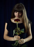 Very beautiful girl with rose in black dress in studio stock photography