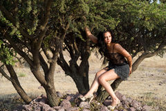 Woman siting in a tree Royalty Free Stock Photography