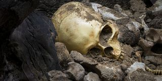 Model skull of human and bones form pit with dark light.Copy space. Concept halloween day royalty free stock photos
