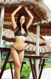 model slitage för härlig bikini Royaltyfri Bild