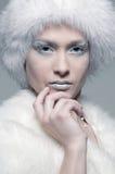 model snöig white för päls Arkivfoto