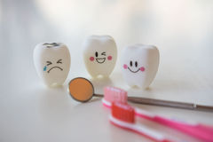 Model toys teeth in dentistry on a white background. Royalty Free Stock Photos