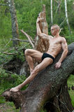 Model with with the tree Stock Photos