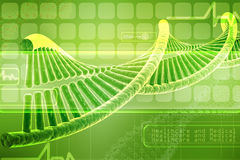 Model of twisted DNA chain  on green Stock Images