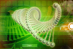 Model of twisted model of twisted DNA chain Royalty Free Stock Photos
