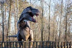 Model Tyrannosaurus Rex. Close up of a model Tyrannosaurus Rex Stock Images