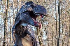 Model Tyrannosaurus Rex. Close up of model Tyrannosaurus Rex Stock Photos