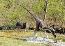 Model of Velociraptor Dinosaur in Outdoors Royalty Free Stock Images