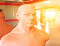 Model voor het in dozen doen en het praktizeren stempels in vechtsporten in het gymnasium tegen de achtergrond van een zonsonderg royalty-vrije stock foto's