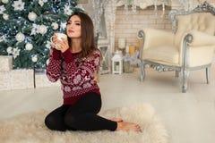 Model w jaskrawym pulowerze Obraz Royalty Free