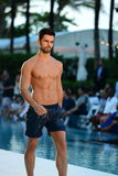 Model walks the runway during Lyberthras Spring Summer 2017 Runway Show Stock Photos