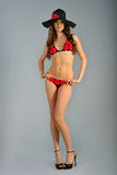 Model wearing bikini at grey  background Royalty Free Stock Photo