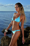 Model wearing blue bikini at the ocean Stock Photography