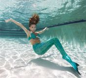 Beautiful young women in a swimsuit, or mermaids tail above and Royalty Free Stock Images