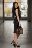 Model Wearing A Dress And Animal Leather Bag Stock Photo