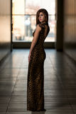 Model Wearing A Dress With Animal Print Stock Photography