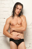 Model with wet hair. Male model posing in studio stock photography
