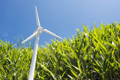 Model of wind power Royalty Free Stock Photos