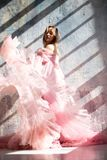 Pink swan dress, frozen moment royalty free stock photo