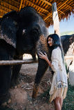 Model woman hugging a big elephant in the zoo-park stock photo