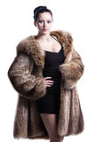 Young lady wearing luxury winter fur coat Stock Image