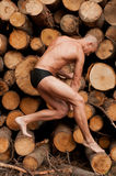 Model with the wood Stock Image