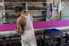 Modeldruck-Sarigewebe in Jaipur, Indien Lizenzfreie Stockfotos
