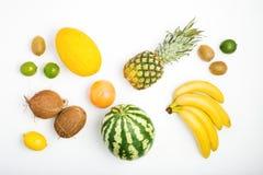 Modele o abacaxi, melancia, coco, bananas, quivi, limão, GR imagens de stock royalty free