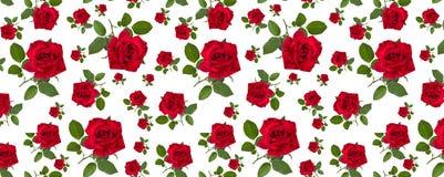 Modelez la rose de rouge sur une tige des feuilles vertes Images libres de droits