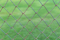 Modelez le mur de rouille avec le fond trouble de l'herbe verte Images stock