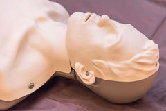 modeling of dummy used in CPR training Royalty Free Stock Photography