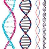 modell 3d av DNA stock illustrationer