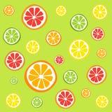 Modell av citrusskivor - apelsinen, citronen, limefrukt och grapefrukten, symboler ställde in Fotografering för Bildbyråer