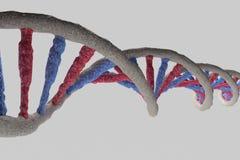 Modell av DNAstrukturen Arkivbilder