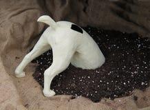 Modell av en hund royaltyfria foton