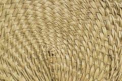 Modell av palmbladfanen Royaltyfria Bilder