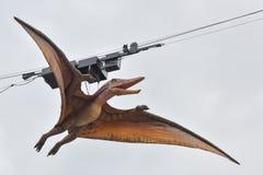 Modell av pteranodon arkivbild